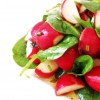 10 Radish and Lettuce Salad * * *